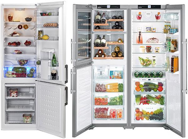 Reguli-frigider-1